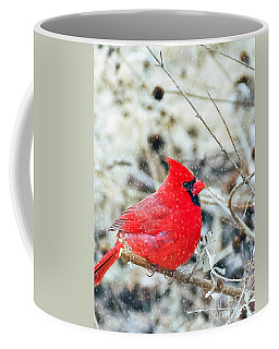 Cardinal Bird Christmas Card Coffee Mug
