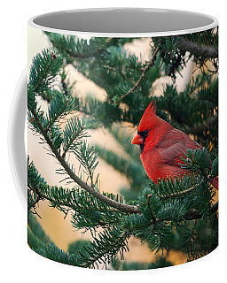 Cardinal In Balsam Coffee Mug