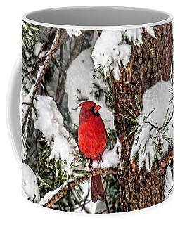 Coffee Mug featuring the photograph Cardinal In Snow  by Lara Ellis
