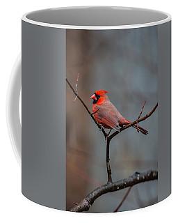 Cardinal Sing Coffee Mug