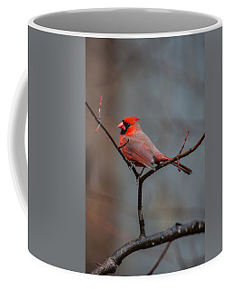 Cardinal Sing Coffee Mug by John Haldane