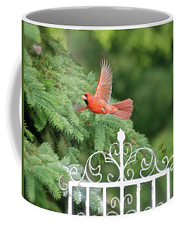 Coffee Mug featuring the photograph Cardinal Time To Soar by Thomas Woolworth