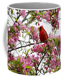 Cardinally Beautiful Coffee Mug