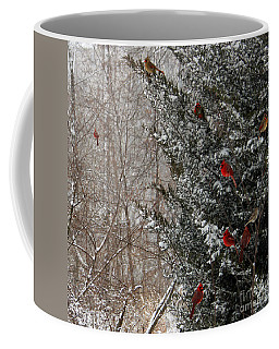Cardinals In Winter 1 Square Coffee Mug
