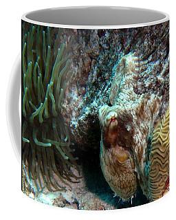 Caribbean Reef Octopus Next To Green Anemone Coffee Mug
