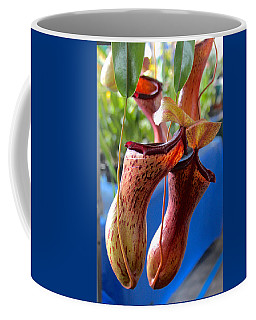 Carnivorous Pitcher Plants Coffee Mug by Venetia Featherstone-Witty