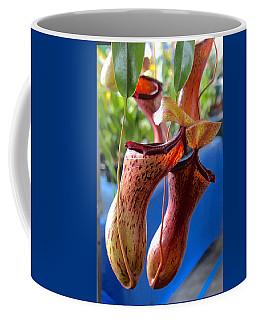 Carnivorous Pitcher Plants Coffee Mug