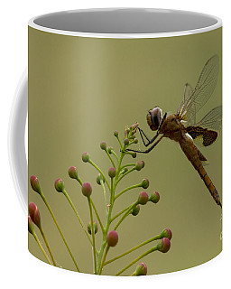 Carolina Saddlebags Coffee Mug