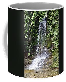 Cascada Pequena Coffee Mug