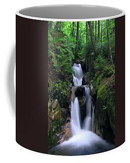 Cascading Brook Coffee Mug