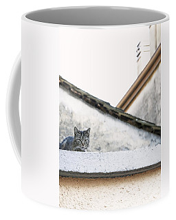 Coffee Mug featuring the photograph Cat On A Roof by Brooke T Ryan