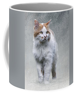 Coffee Mug featuring the photograph Cat On Texture - 01 by Raffaella Lunelli