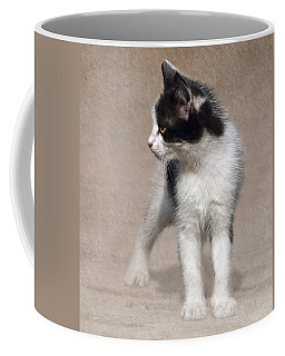 Coffee Mug featuring the photograph Cat On Texture - 03 by Raffaella Lunelli