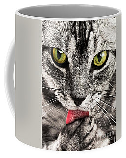 Coffee Mug featuring the photograph Cat by Paul Fearn