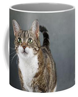 Cat Portrait Coffee Mug