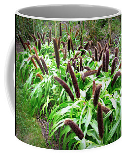 Coffee Mug featuring the photograph Cat Tail Plants by Deborah  Crew-Johnson