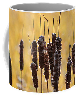 Cat Tails In November Coffee Mug