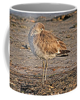 Coffee Mug featuring the photograph Catching Some Zzzzzs by HH Photography of Florida