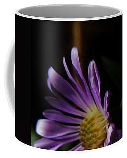 Catching The Sun's Rays Coffee Mug