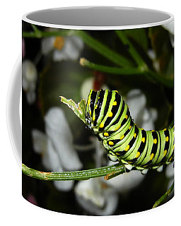 Coffee Mug featuring the photograph Caterpillar Camouflage by Bill Swartwout