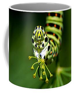 Caterpillar Of The Old World Swallowtail Coffee Mug