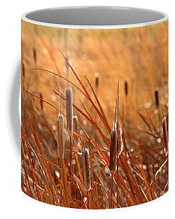 Coffee Mug featuring the photograph Cattails  by Lynn Hopwood