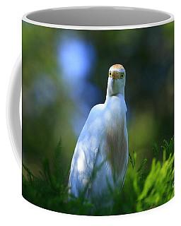Cattle Egret Eyes Coffee Mug
