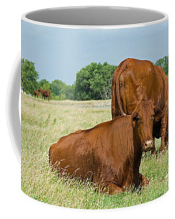 Coffee Mug featuring the photograph Cattle Grazing In Field by Charles Beeler