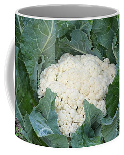 Cauliflower Coffee Mug