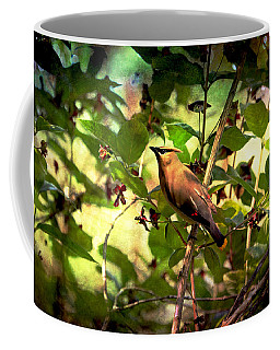 Coffee Mug featuring the photograph Cedar Waxwing by Peggy Collins