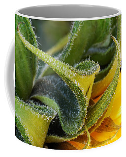 Coffee Mug featuring the photograph Celebration Sunflower by Wendy Wilton