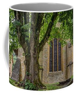 Centenarian Tree Coffee Mug by Michelle Meenawong