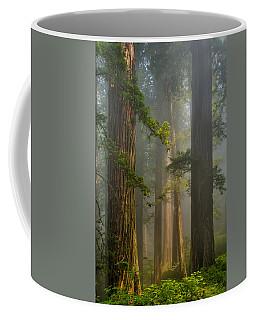 Center Of Forest Coffee Mug