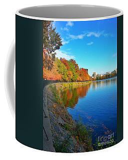 Central Park Autumn Landscape Coffee Mug
