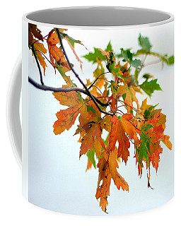 Coffee Mug featuring the photograph Changing Seasons by Viviana  Nadowski