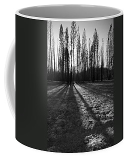 Charred Silence - Yosemite Rm Fire 2013 Coffee Mug