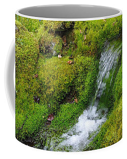 Coffee Mug featuring the photograph Chasing Waterfalls by Marilyn Wilson