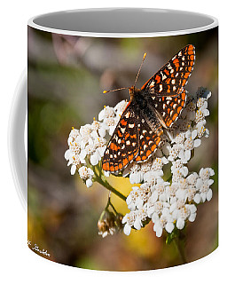 Checkerspot Butterfly On A Yarrow Blossom Coffee Mug by Jeff Goulden