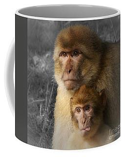 Cheeky Baby Monkey And Mum Coffee Mug