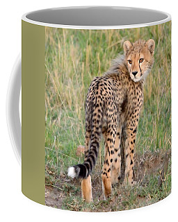 Coffee Mug featuring the photograph Cheetah Cub Looking Your Way by Tom Wurl