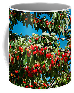 Cherries To Be Harvested, Cucuron Coffee Mug