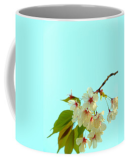 Coffee Mug featuring the photograph Cherry Blossom Flowers by Rachel Mirror