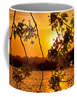 Coffee Mug featuring the photograph Cherry Blossom Sunset by Mitchell R Grosky