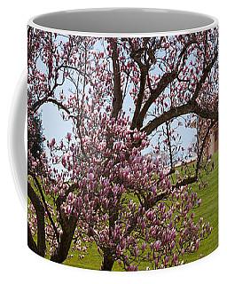 Cherry Blossom Trees At The Gravesite Coffee Mug