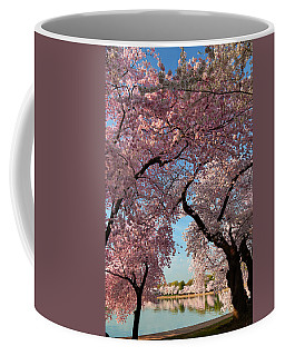 Cherry Blossoms 2013 - 024 Coffee Mug