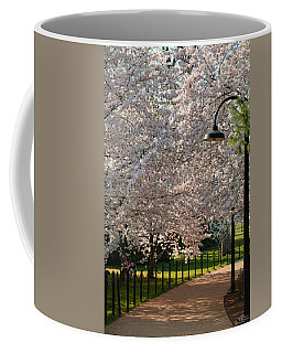 Cherry Blossoms 2013 - 060 Coffee Mug