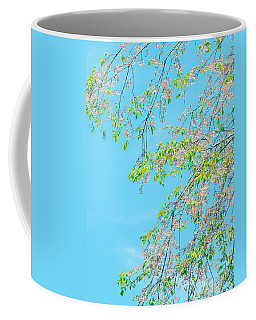 Coffee Mug featuring the photograph Cherry Blossoms Falling by Rachel Mirror