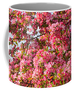 Cherry Blossoms In Washington D.c. Coffee Mug