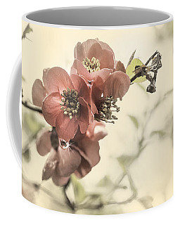 Coffee Mug featuring the photograph Cherry Blossoms by Peter v Quenter