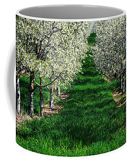 Coffee Mug featuring the photograph Cherry Orchard Morning by Mary Lee Dereske